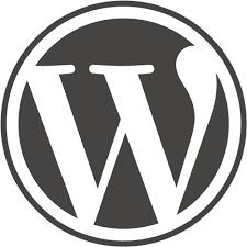 Wordpress based : Content Websites